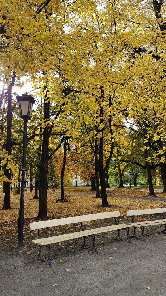 varsavske-parky-na-jesen