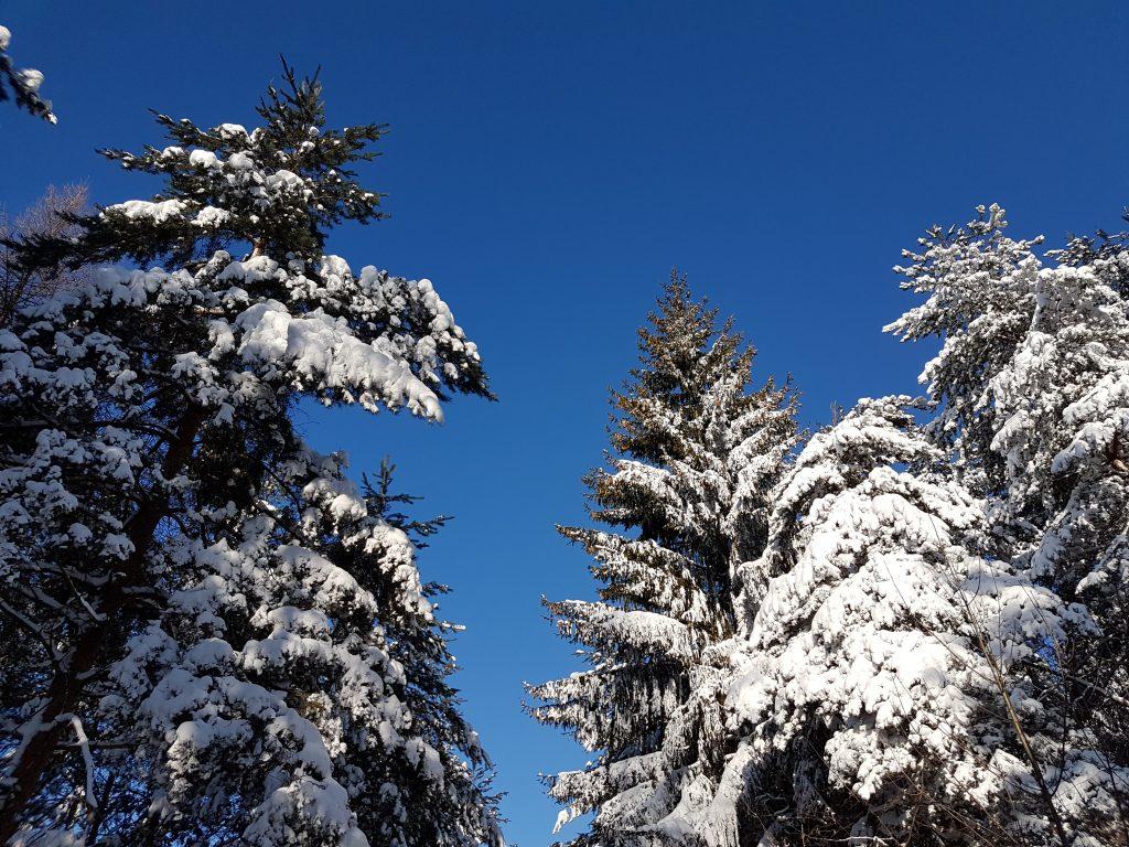 turistika-na-stranik-v-zime