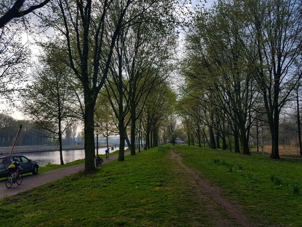 park-v-amsterdame