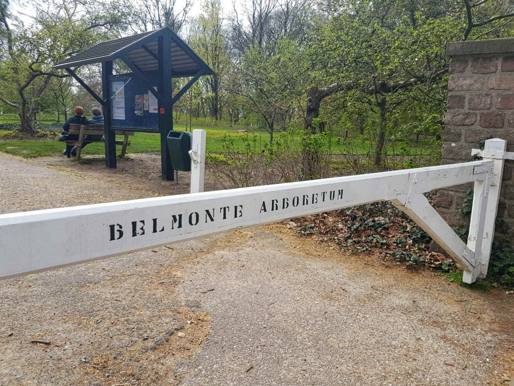 wageningen-arboretum-belmonte