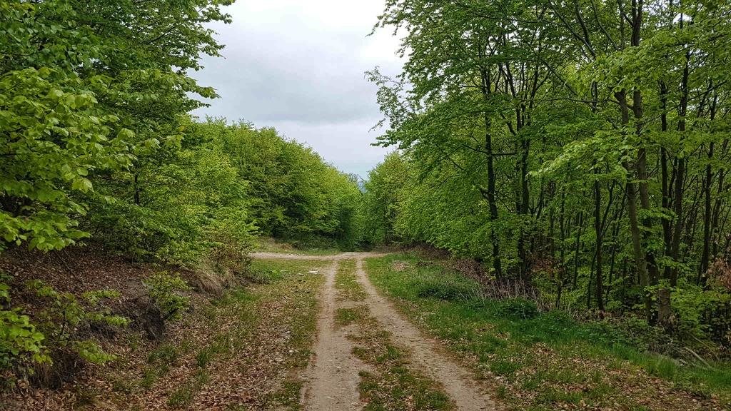 cyklisticka-cesta-pod-tribecom