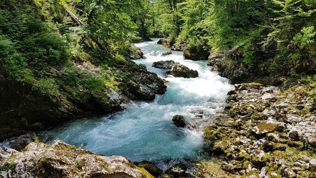 cista-voda-zo-slovinskych-apl
