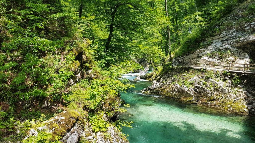 krastova-tiesnava-v-slovinsku