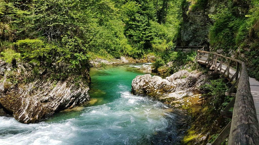 najkrajsia-tiesnava-vintgar-slovinsko