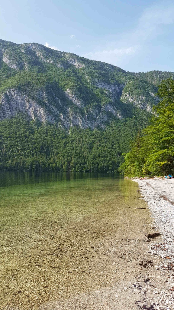plaze-bohinjskeho-jazera