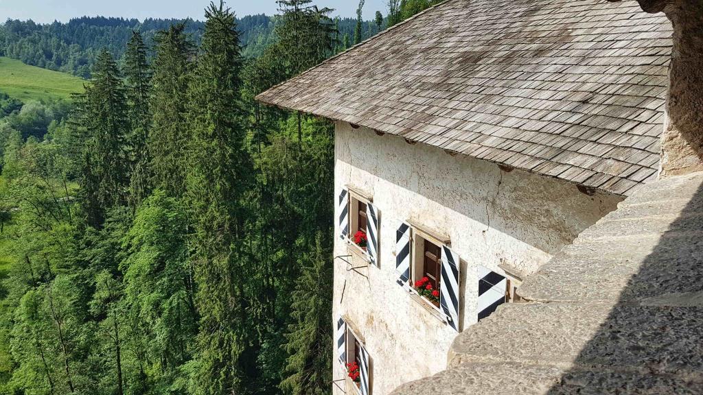 pohlad-na-hrad-predjama-slovinsko