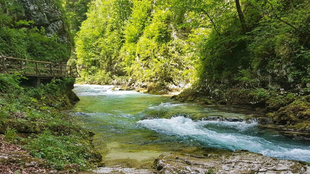 vintgar-julske-alpy-slovinsko