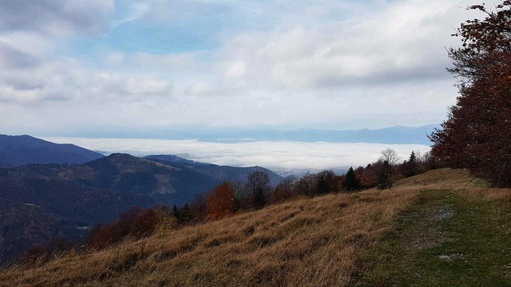 belianska-dolina-z-lysca