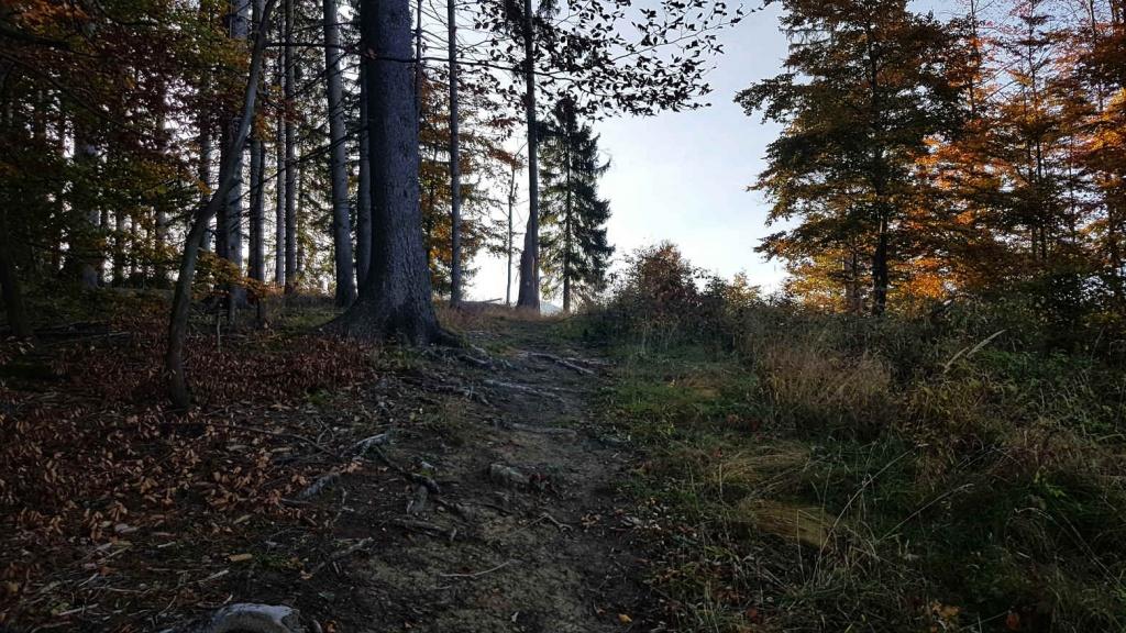 cesta-z-jasenskej-doliny