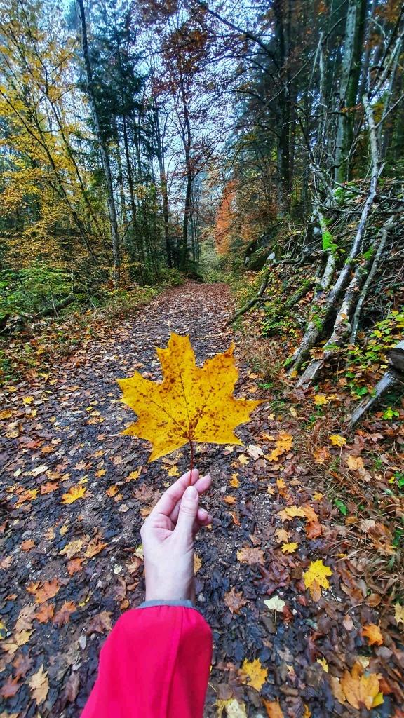 jesen-v-rakuskej-tiesnave