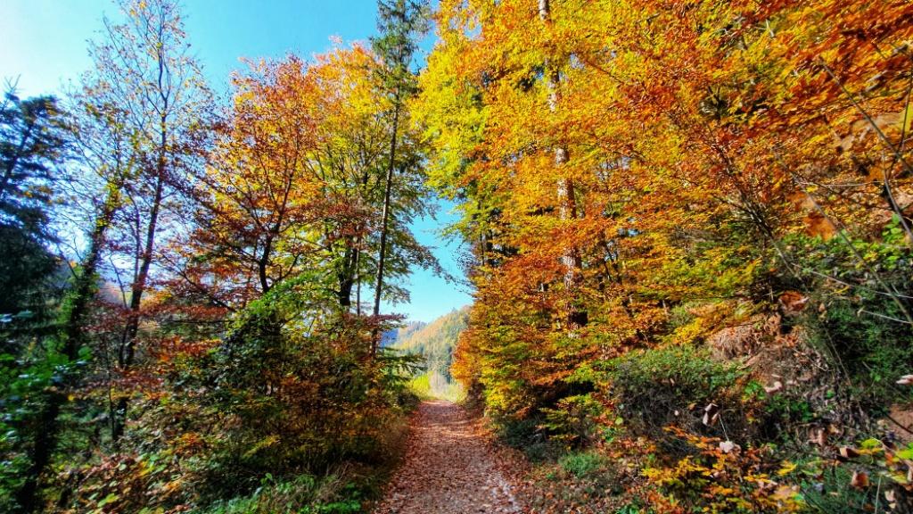 krasne-jesenne-pocasie-v-rakusku