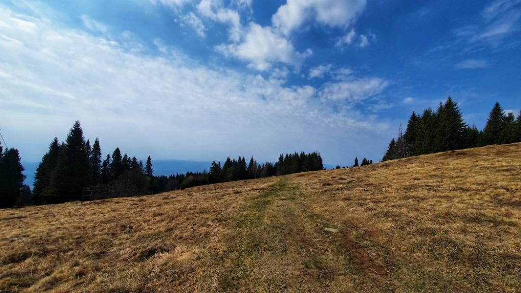 predna-polana-1367-m