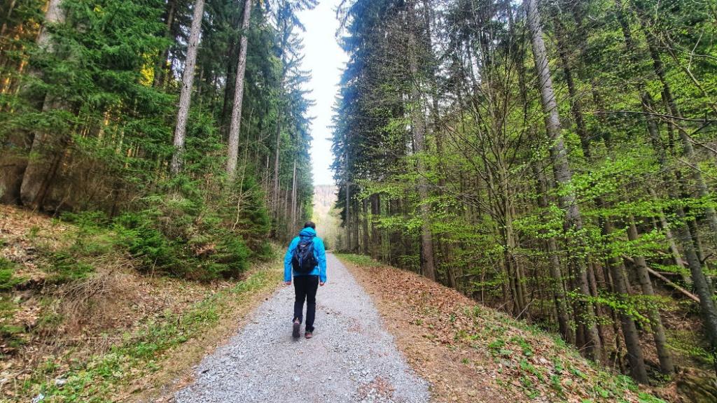 turisticka-trasa-na-vrch-polana
