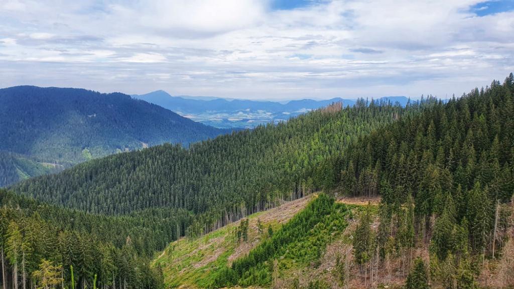 vyhlad-na-chocske-vrchy