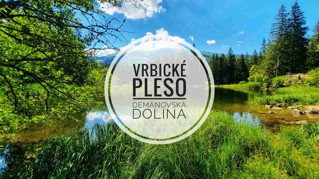 vrbicke-pleso-demanovska-dolina-tatry