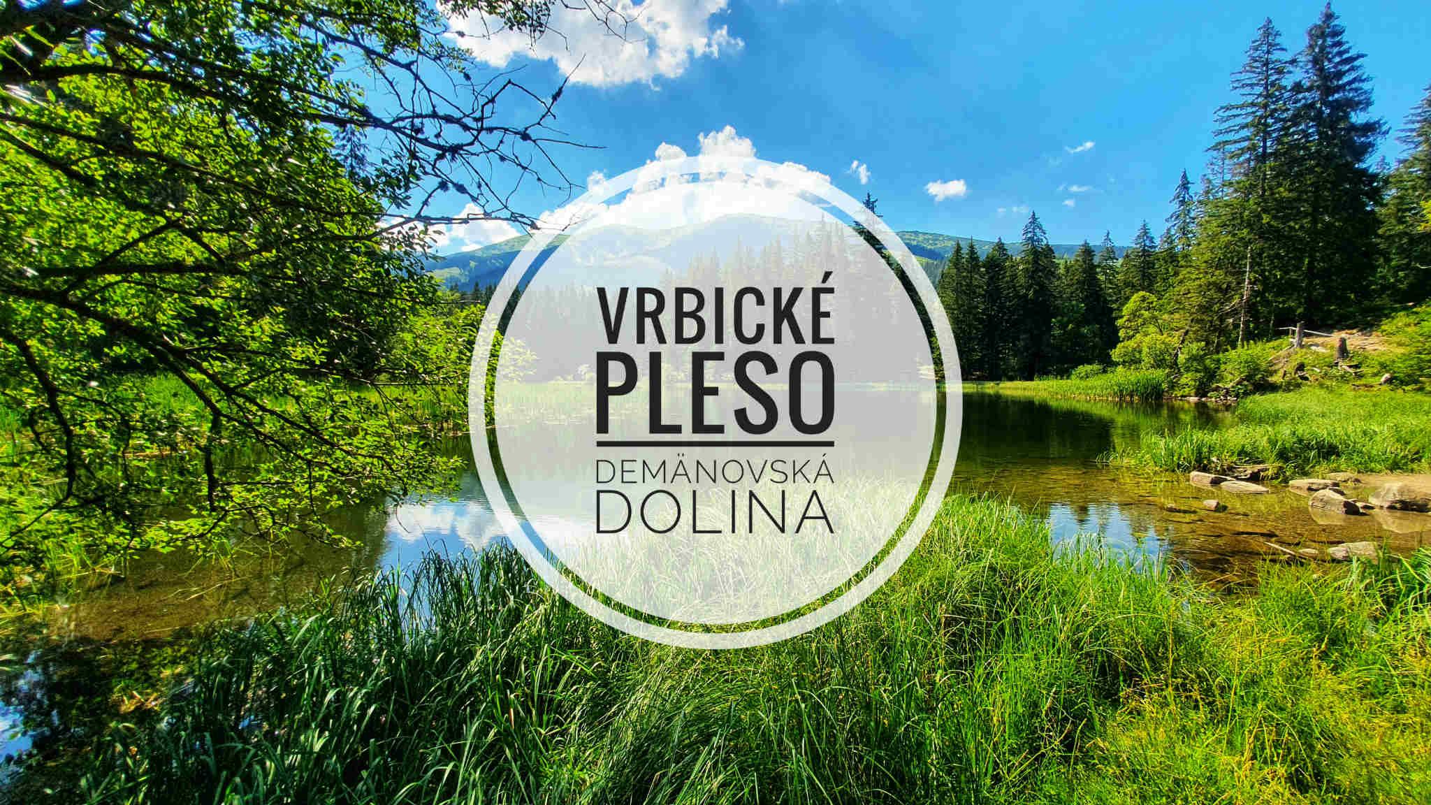 Vrbické pleso a Demänovská dolina