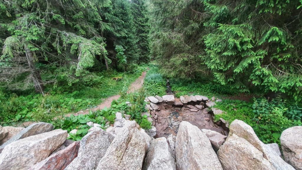 lesna-cesticka-ku-strazcovi-lesa