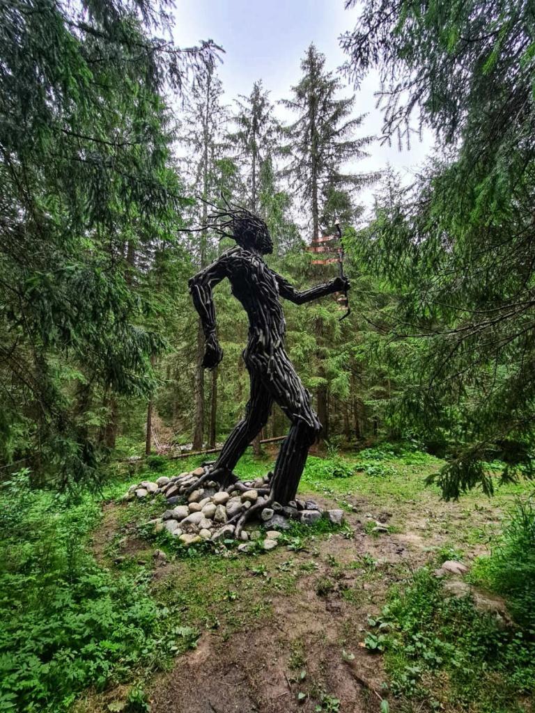 strazca-lesa-z-blizka