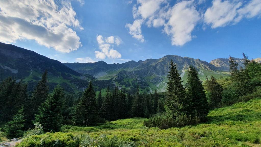 zelena-dolina-zapadne-tatry