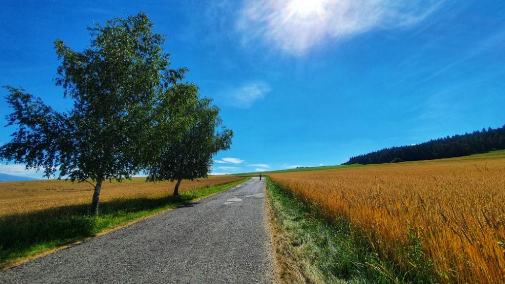 cesta-cez-plostin-a-zaavanu-porubu